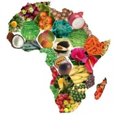 Africa map of vegetables